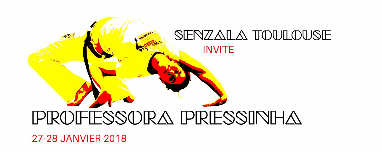 stage capoeira pressinha 2018 toulouse